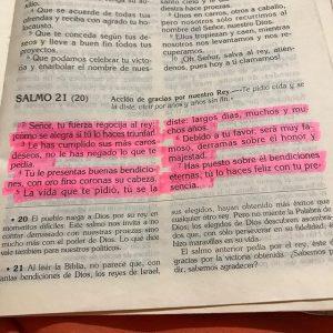 salmo 21 explicación